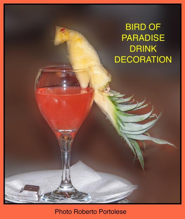 BirdOfParadiseDrinkDecoration1